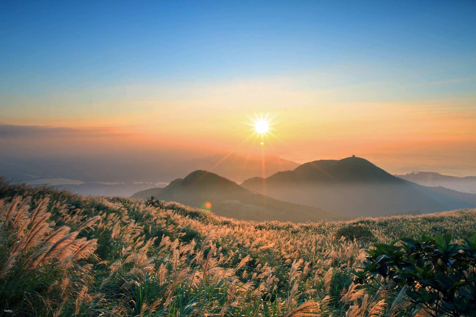 台北-陽明山擎天岡草原,大屯山賞芒草,冷水坑 包車一日遊